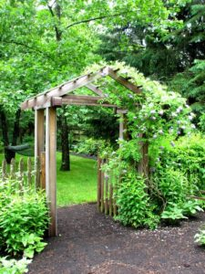 Garden Planning Ideas for Your Home