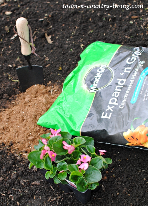 Miracle Gro Expand 'N Gro, easy gardening tips
