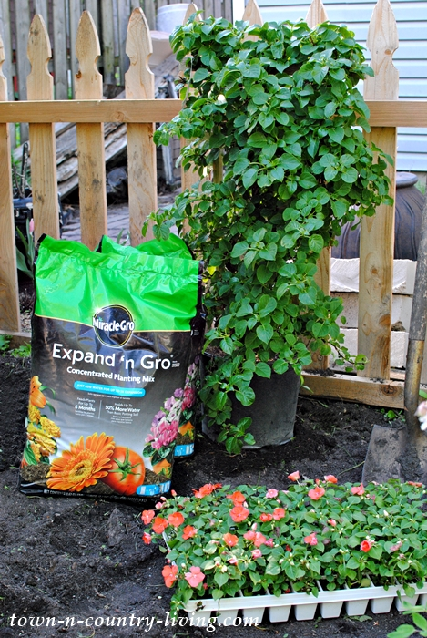 planting tips, gardening, preparing soil, flower gardening