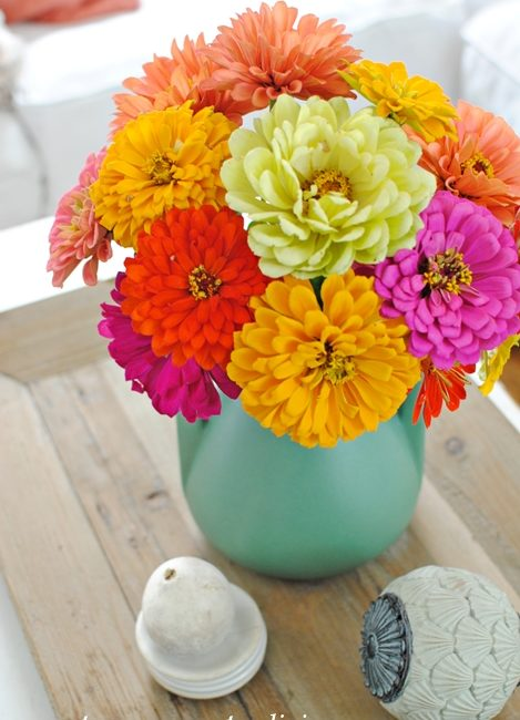 Decorating with Flowers, zinnias, country flower arrangements
