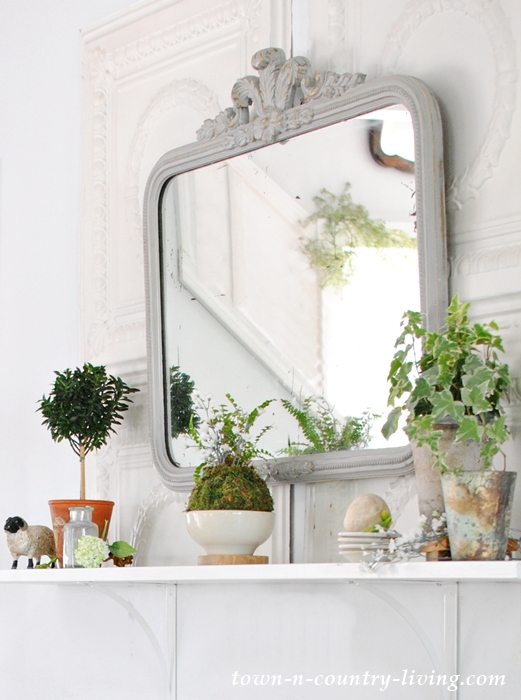 Plant vignettes for my dining room redo