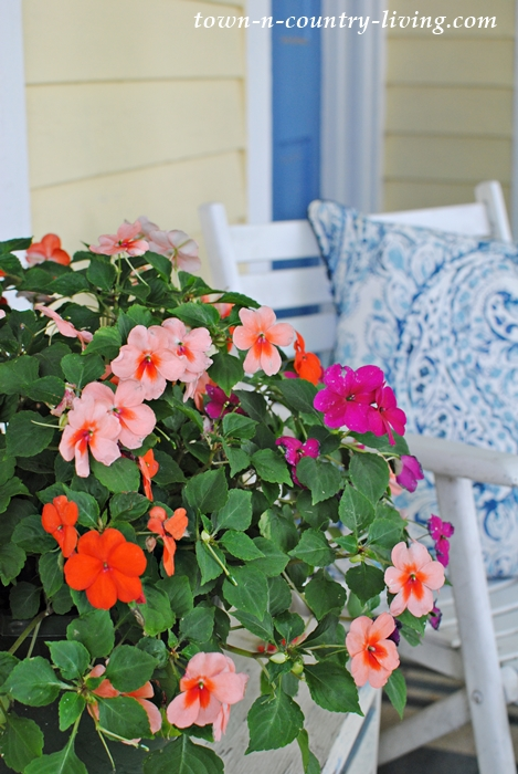 impatiens, farmhouse entry, summer porch