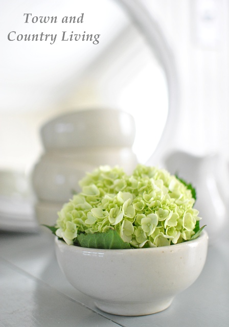 white ironstone bowls with white hydrangea