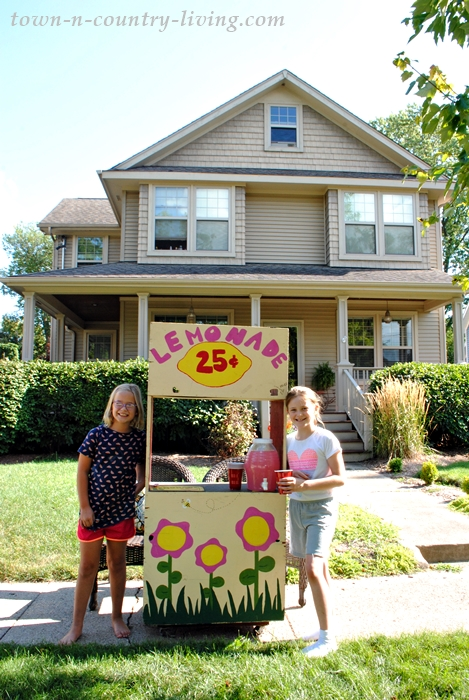 Lemonade Stand in Crystal Lake, Illinois
