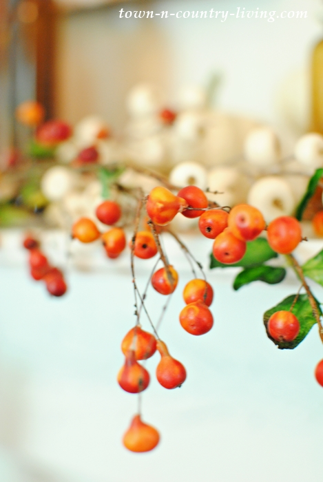 Orange and White Berries