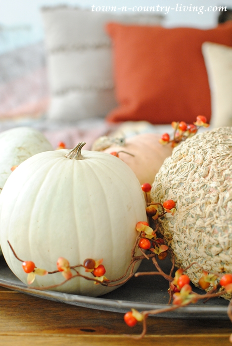 Heirloom pumpkins create an easy fall vignette