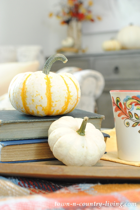 Use fall gourds to decorate for the autumn season