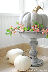Pretty Fall Vignettes: Inside and Out