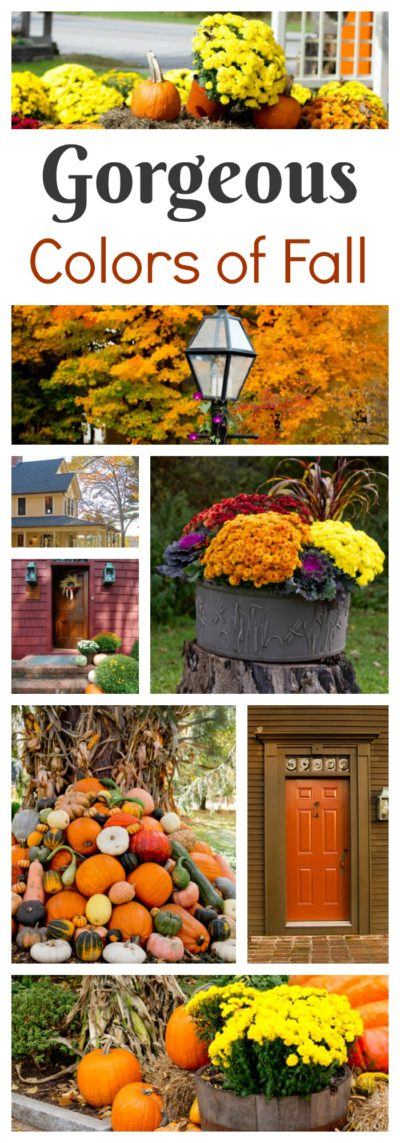 See the gorgeous colors of fall