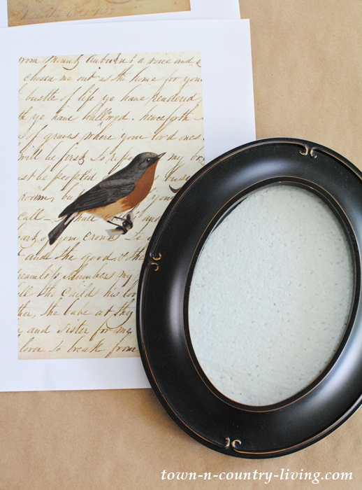 Vintage Birds to print and frame