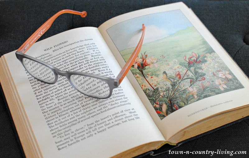 Vintage Wildflower Book
