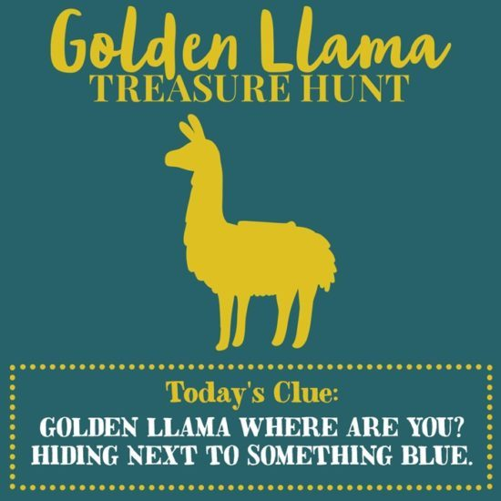 Golden Llama Treasure Hunt by Cost Plus World Market