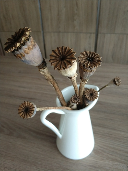 Dried Poppy Flower Arrangement