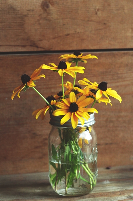 Rudbeckia in Mason Jar