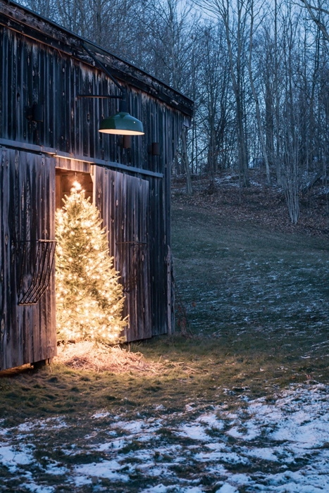 Outdoor Christmas Tree by Vinyet Etc.