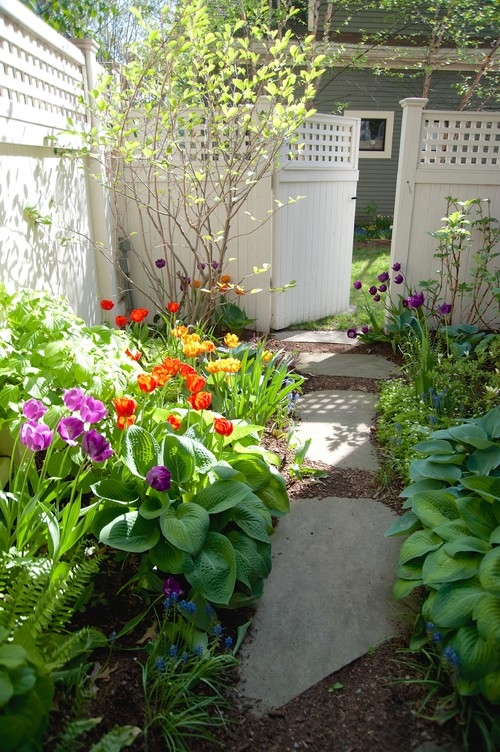 Courtyard garden in spring