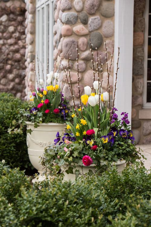 flowering spring container garden