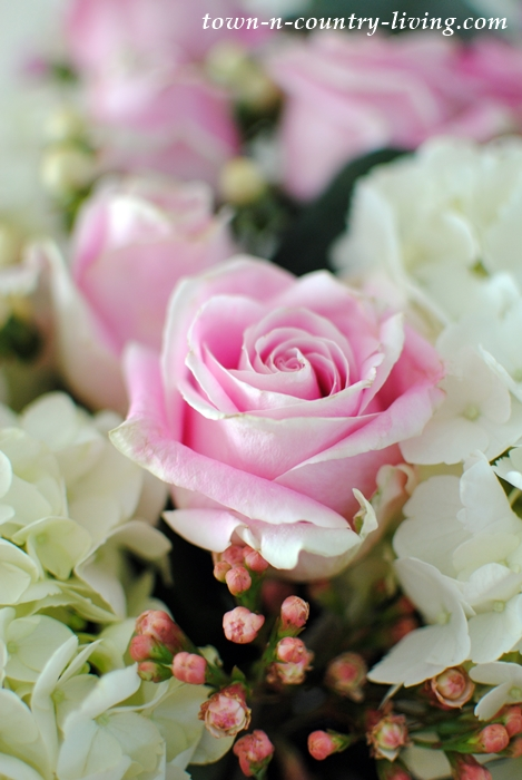 Blush Rose in a Spring Flower Arrangement