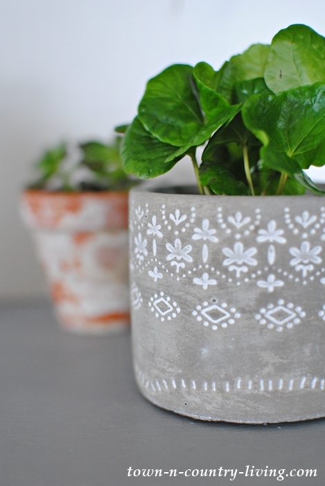 Miniature Plants in Decorative Clay Pots