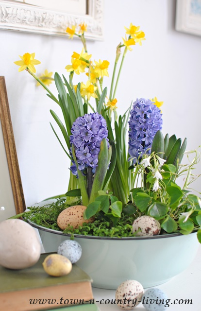 How to make a spring bulb flower arrangement