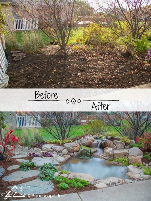 Backyard Transformation with an Ecosystem Pond