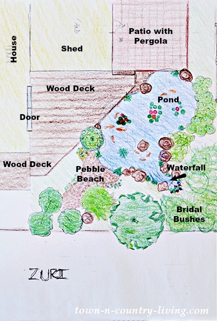 Landscape Design Drawing with Backyard Pond