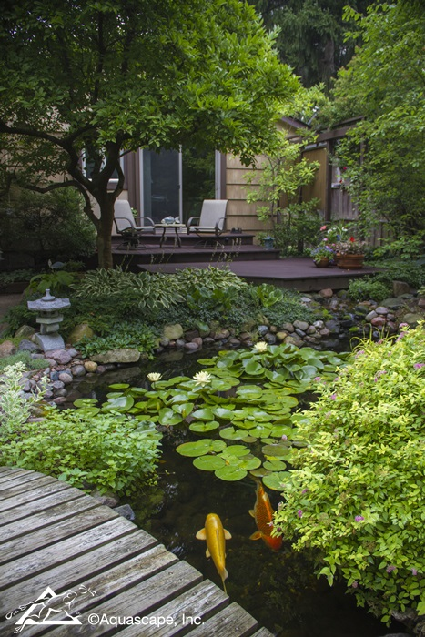 Backyard Koi Pond with Deck and Bridge