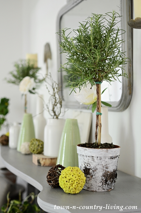 Rosemary Topiary on Country Style Summer Mantel