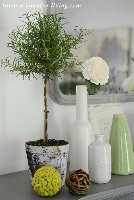 Rosemary Topiary and Simple Vases on Summer Mantel