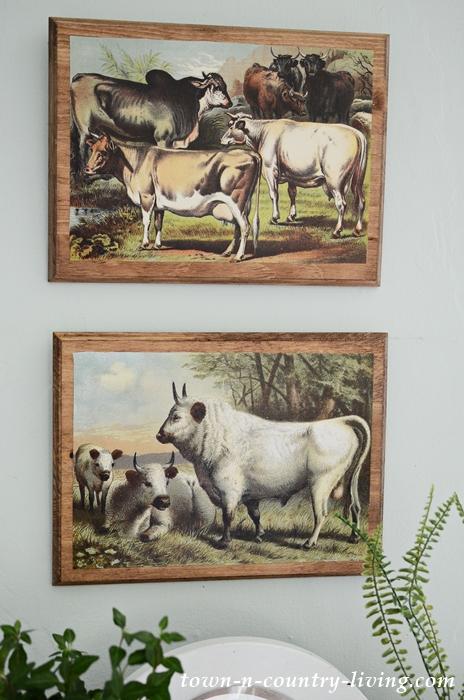 Cow Printables. Make Farmhouse Wall Art with Free Printable.