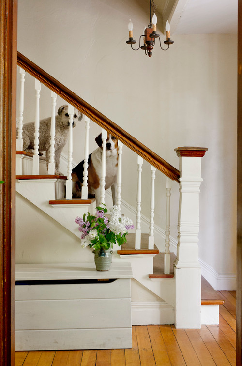 New England Farmhouse with Pair of Dogs