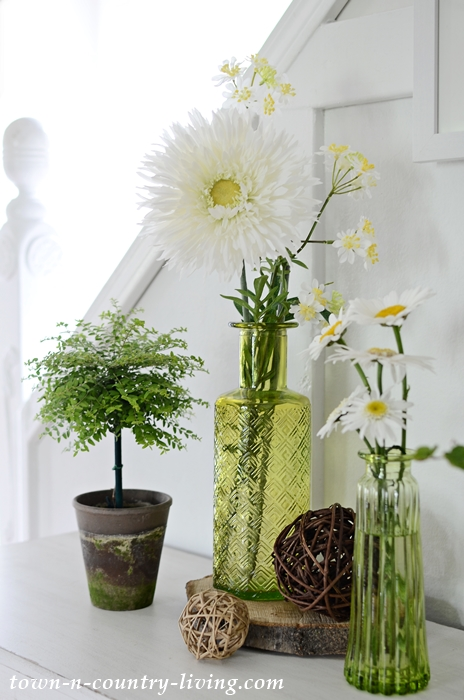 Daisies in Green Vases