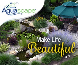 Make Life Beautiful with Aquascape Water Features