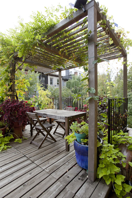 Simple Pergola Over Deck for Cozy Dining