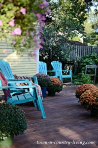 Easy Outdoor Fall Decorations: Think Mums!