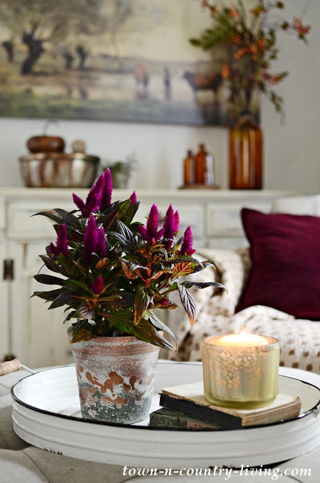 Flowers in Fall Home Tour