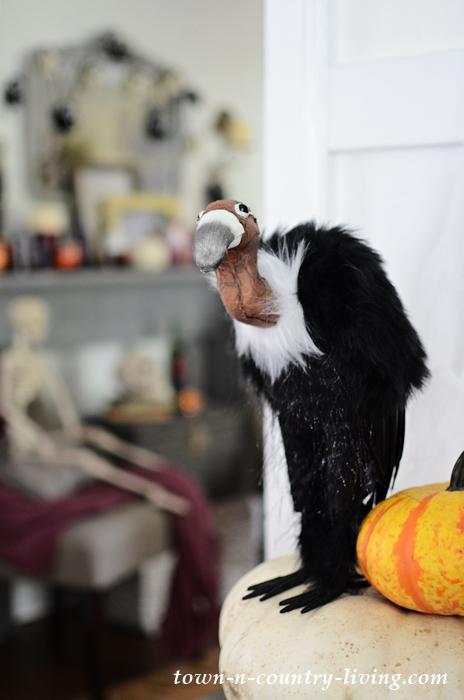 Halloween Vulture