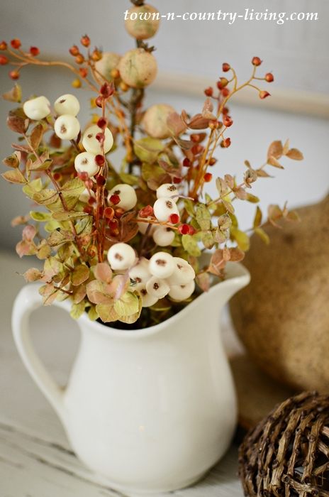 Natural Fall Vignette in Neutral Colors