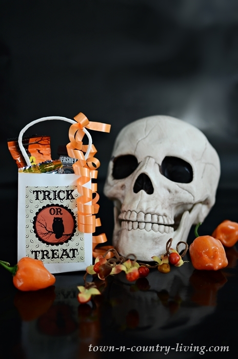 Vintage Halloween Treat Bags to Make with Free Printable