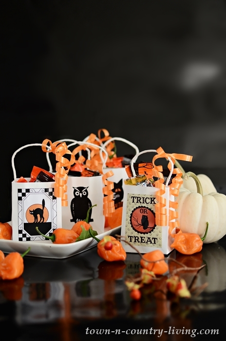 Fun Trick or Treat Bags to Make with Free Printable