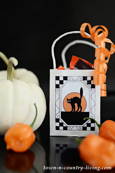 Vintage Halloween Treat Bags - Scaredy Cat