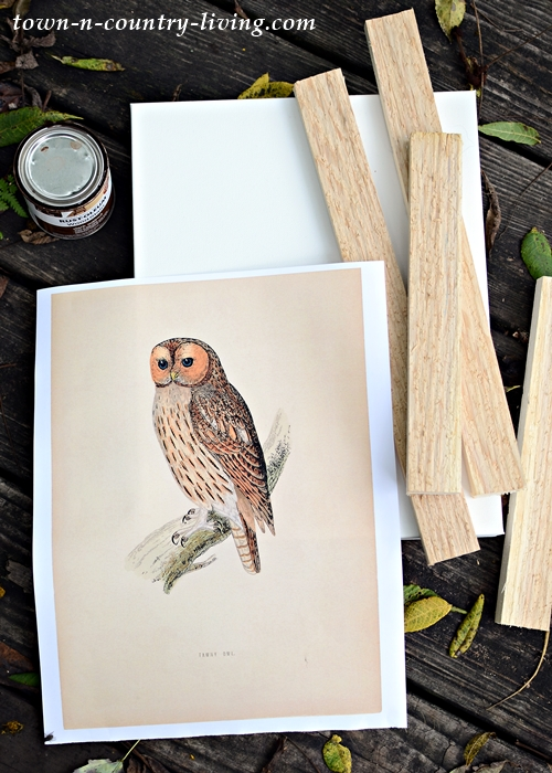 Free Owl Printable and Supplies for Framing