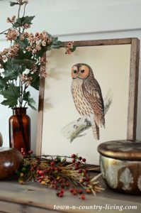 Vintage Owl Printable: Create a Fall Vignette