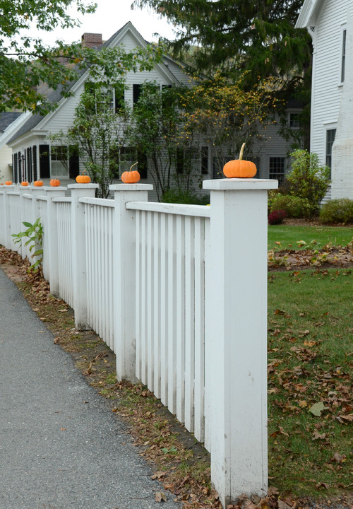 Small Orange Pumpkins on White Picket Fence