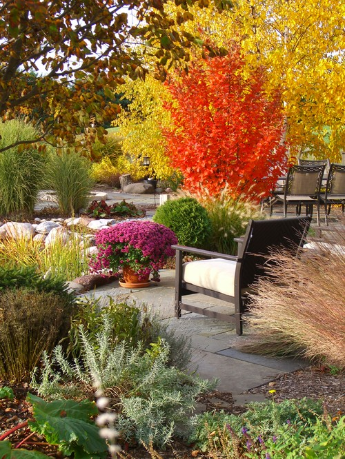 Fall Color Plants in Traditional Garden