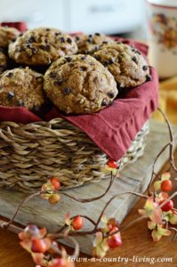 Chocolate Chip Pumpkin Muffins: It's October!