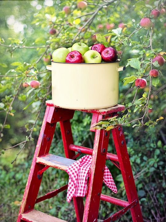Green and Red Apples in Enamelware Pot