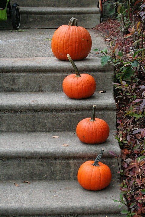 Pumpkins Lining the Stairs to Front Porch