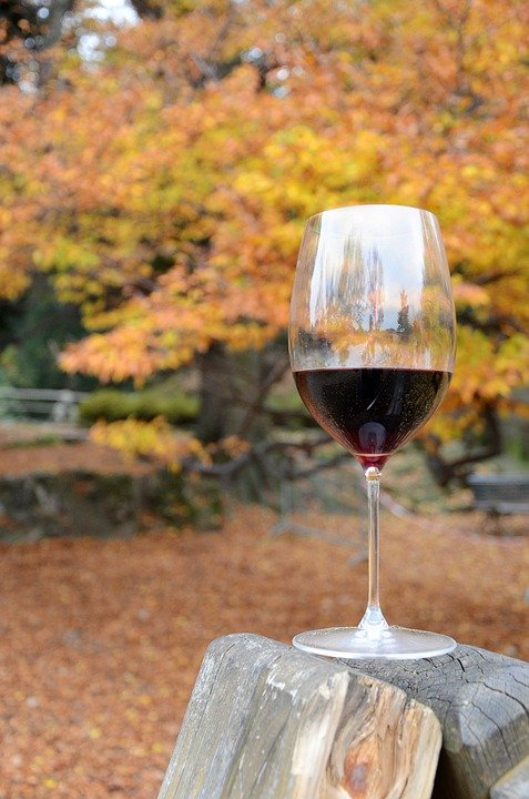 Glass of Red Wine - Fall Activities