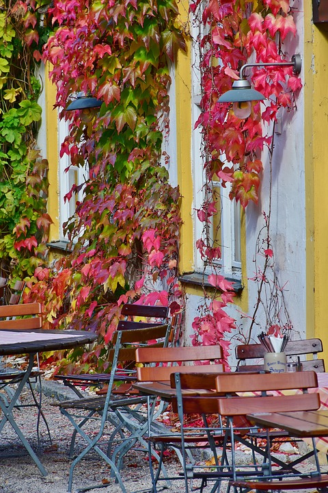 Outdoor Cafe in the Fall